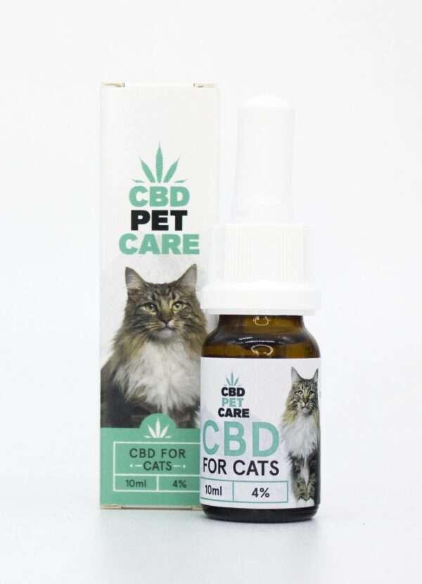 Olio aromatico per Gatti con CBD 4%