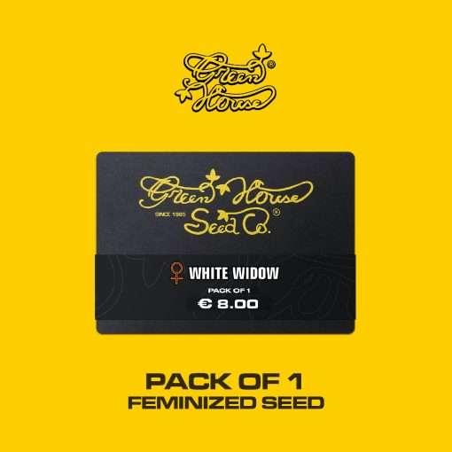 White Widow Auto 1 seme